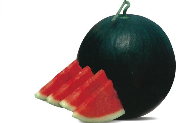 Hybrid Sugar Baby Watermelon Baggio