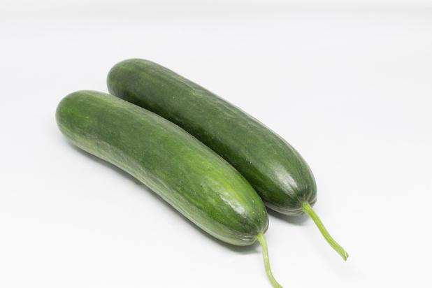 Hybrid Cucumber Paleza Fruits